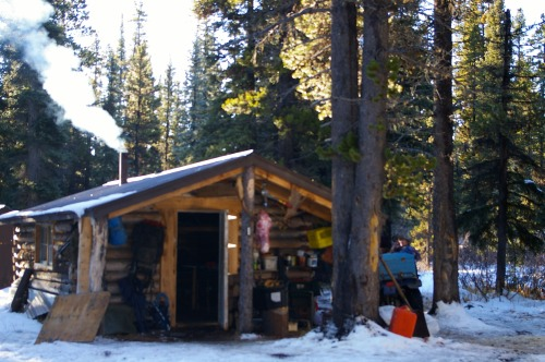 The cabin at Louie Creek on a sunny day.