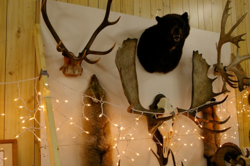 Animals of hunting trips past on display at the game dinner and dance.