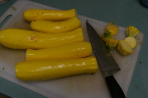 Yellow zucchini ready for dehydrating.